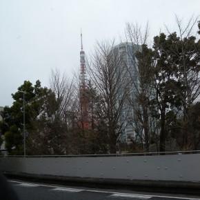 東京タワー!とかってきゃっきゃっしてますが