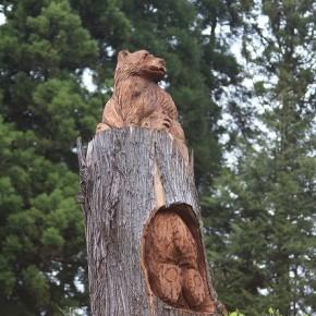下半身露出のヘンタイ熊かと思って焦りました